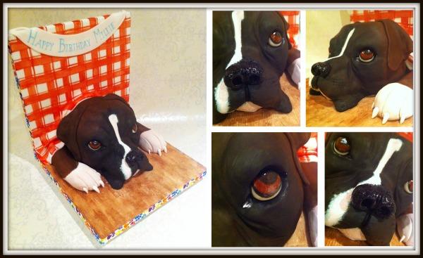 Boxer Dog Birthday Cake Montage